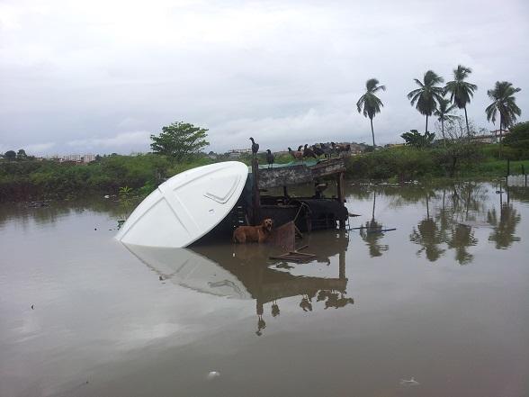 Chuva forte alaga Ruas e animais ficam ilhados no Grande Rosa Elze. (Foto: SE Notícias)