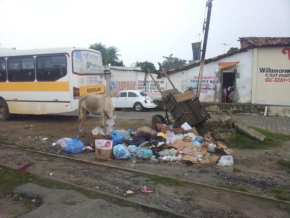 O SE Notícias já  denunciou o descaso do poder Prefeitura em relação ao grave problema do acúmulo de lixo nas ruas da cidade, de jumentos, transitando pelas ruas. (Foto: leitor SE Notícias)