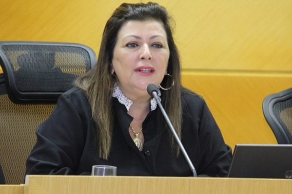 TCE vê irregularidades em períodos auditados nas prefeituras de Capela e Divina Pastora