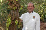 Evento de gastronomia nacional seleciona representante sergipano