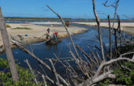 Prefeitura de Aracaju inicia obras de limpeza no canal da 13 de Julho