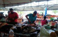 Mercado do Conjunto João Alves, tem preços variados de pescados; veja dicas