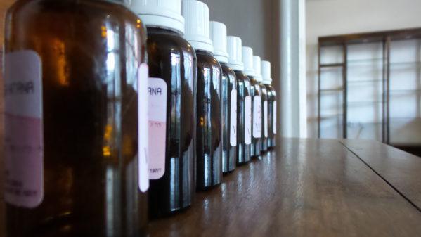 Cemar Aracaju oferece tratamento homeopático gratuito para adultos e idosos