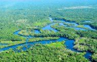 Governo publica decreto que coloca em risco nove áreas protegidas na Amazônia