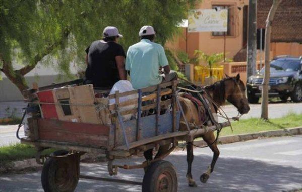 Superintendência Municipal de Transportes fará cadastro de carroceiros de Aracaju