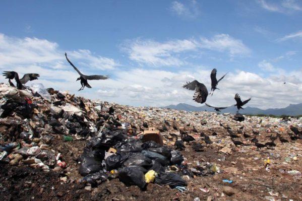 Crise econômica diminui geração de lixo pela primeira vez em 13 anos