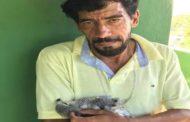 Bando armado invade Parque dos Falcões, espanca funcionários, mata uma ave e rouba outras cinco; assista