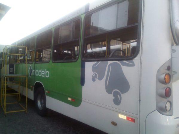 Em protesto por mais segurança, ônibus são apedrejados em Socorro