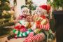 Saiba o que abre e o que fecha no feriado do dia 8 de dezembro