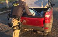 Polícia Rodoviária Federal apreende 120 kg de maconha em Itabaiana; assista