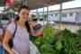 Feira da Agricultura Familiar da Semarh acontece nesta sexta, 19