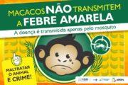 Primatas mortos nem sempre trazem evidências de febre amarela