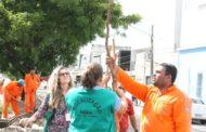 Prefeitura e SergipeTec renovam arborização urbana em diversas avenidas de Aracaju