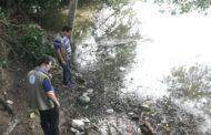 Secretaria de Meio Ambiente fiscaliza Rio Poxim para combater a mortandade de peixes
