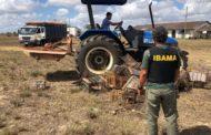 Ibama apreende 277 animais silvestres em operação contra caça em SE