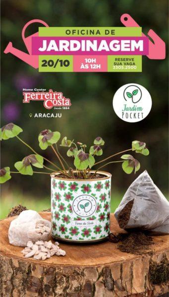 Sábado acontece oficina gratuita de jardinagem em Aracaju