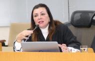 Conselheira destaca treinamento voltado ao Controle Interno de 14 municípios