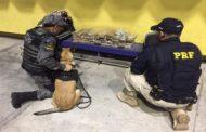 Jovem é preso com mais de 26kg de maconha dentro de duas malas
