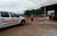 No interior de Sergipe, Parque de vaquejada é interditado pela Emdagro