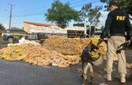 PRF apreende 6 toneladas de maconha que seriam entregues em Sergipe