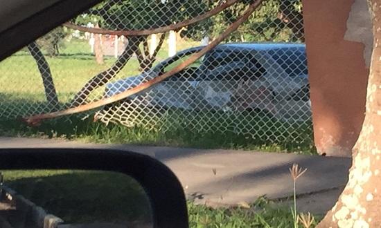Veículo colide com caminhão e invade Parque da Sementeira