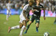 Santos vence Palmeiras e é vice-líder; Cruzeiro segue na degola; confira os resultados da 24ª rodada