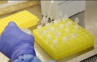 Governo de Sergipe confirma primeiro caso de coronavírus