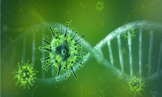 Sergipe possui 15 casos confirmados do coronavírus