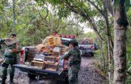 Pelotão de Polícia Ambiental alerta que manter Animais Silvestres em cativeiro sem autorização é crime