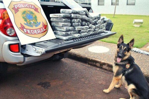 Dois homens são presos pela PF em Aracaju retirando encomenda com drogas sintéticas nos Correios