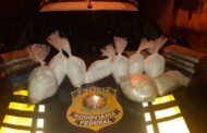 Em pouco mais de 48 horas PRF realiza nova apreensão de cloridrato de cocaína na BR-101, em Sergipe