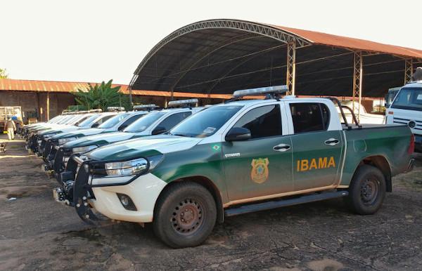 Concurso Ibama 2021 é autorizado com 568 vagas para três cargos