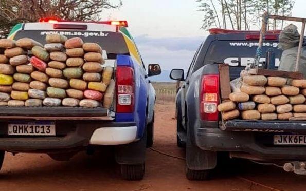 Polícia apreende mais de 142 kg de maconha no Alto Sertão sergipano
